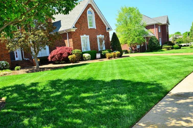 Lawn Care residential
