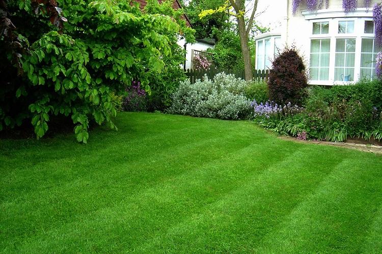 Lawn-Care-residentiel-750-x-50